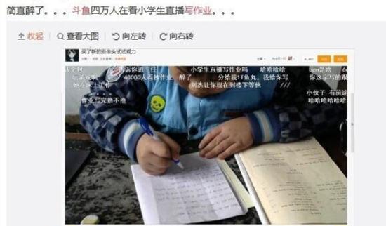 万名网友围观小学生写作业