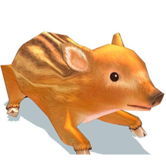十分可爱的幼小野猪
