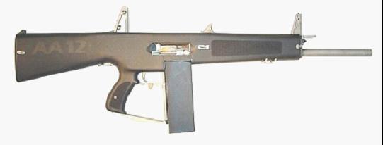 AA 12 GUN.