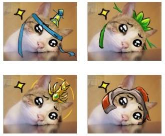 东京猫猫小莓头像