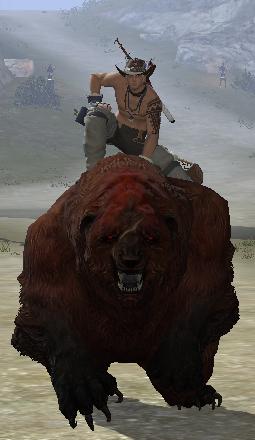 熊.png