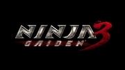 《忍者龙剑传3》游戏壁纸(三)