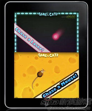 猫咪专用游戏