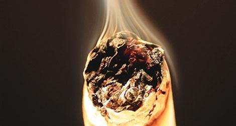 荒唐的国家烟草科技进步奖
