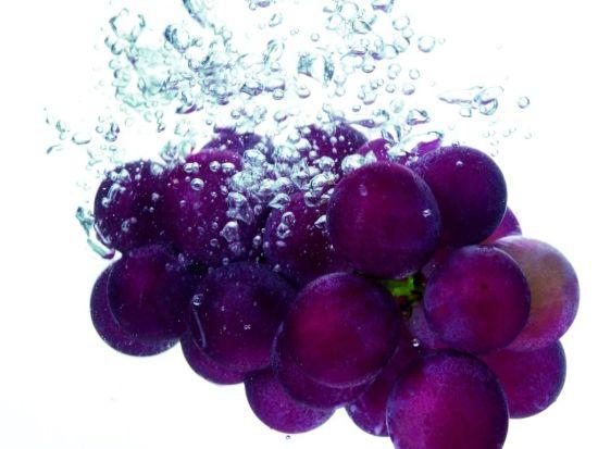 揭秘葡萄籽