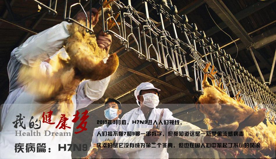 H7N9-2013健康梦