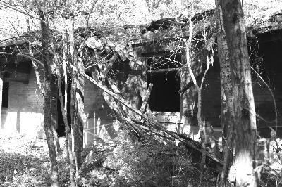 屋顶坍塌、梁架腐朽的张作相官邸中院正房 唐大华 摄