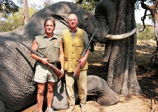 大象和国王美女十大欧美明星:让西班牙老美女a大象图片