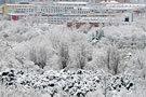 紫竹院雪后全景