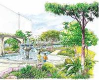 珠江御景 实景图 园林景观