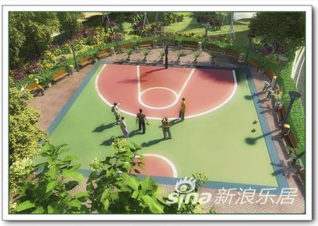 篮球场效果图