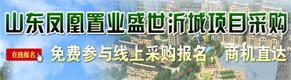 山东凤凰置业采购住宅电梯