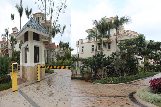 别墅大门口有棵香樟树