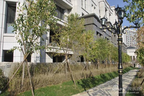 在景观设计上,保持欧式新古典台地园林的华丽气势,运用现代手法将台地