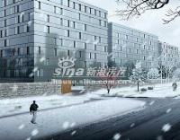 上第MOMA 实景图 小区道路-雪景