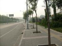 百旺茉莉园 实景图 南面路