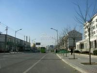 苹果派 实景图 附近市政路