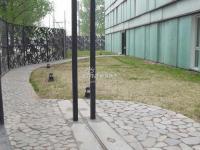 上第MOMA 实景图 小区环境