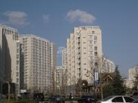 新龙城 实景图 楼盘外观