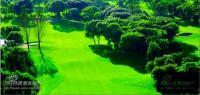 东方夏威夷 实景图 周边华堂高尔夫