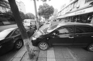 300米盲道上停了16辆车 南京盲校前盲道被挤占