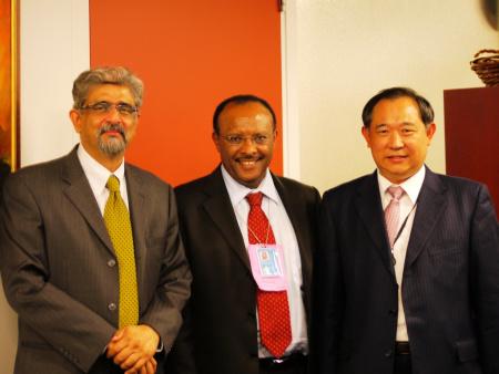 中国世界和平基金会出席联合国千年发展目标峰会
