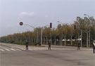 机场附近道路实行管制