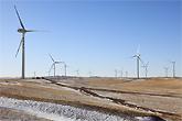 内蒙古巴音敖包建立了风场
