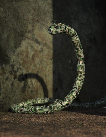 以色列研制机械蛇可潜入下水道执行暗杀任务(图)