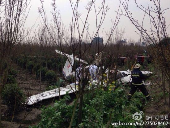 网友爆料称一架小飞机坠落在都江堰农田(图)|坠