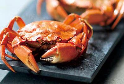 吃蟹要慢品,又总是和饮酒休闲密不可分。