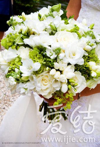 婚礼常用鲜花 浪漫花语