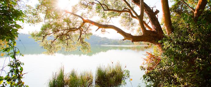 阿鲁沙国家公园