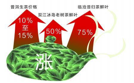 数据来源:中国茶叶流通协会《2013全国春茶产销形势分析报告》 图形 徐侨唯 制