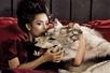 韩星奇趣童话写真
