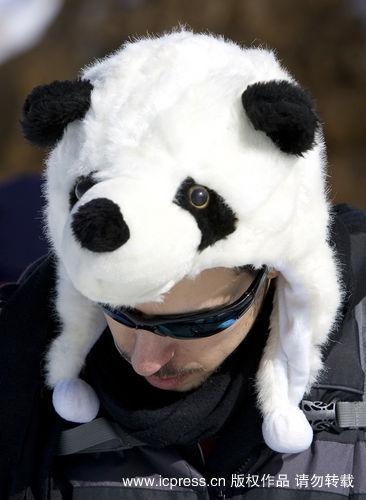 云南野生动物园熊猫真多简笔画