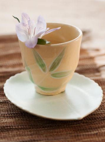 馬黛茶是營養補給物