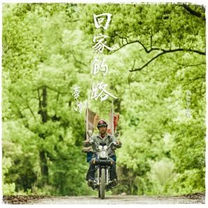 回家的路(2015央视春晚预热宣传曲)-刘德华