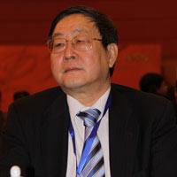 海南嘉华控股有限公司总裁 张跃人