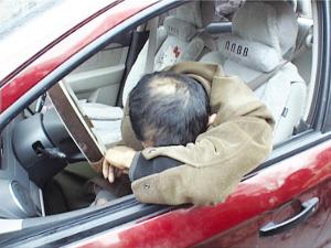 司机在车内睡着了。张先生供图