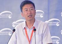 国务院发展研究中心产业经济研究部主任 王晓明