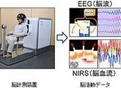 人脑思考控制系统