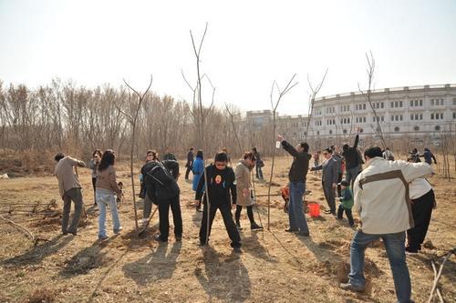 北京燕宝BMW车主植树活动
