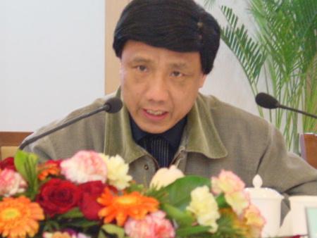 中国汽车工业协会副秘书长杜芳慈发言(图文)