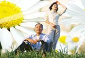 春暖花开 老人出游正当时