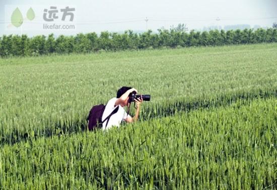 摄影师也成了风景