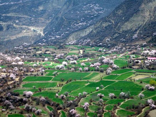 南迦巴瓦峰下的村庄
