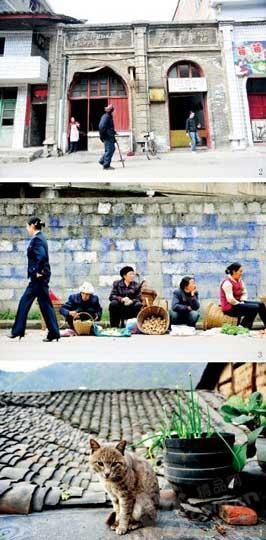 保留着墙上标语的老房已经改为临街店面(上图) 集市上卖土特产的老街人(中图) 四合院上晒太阳的小猫(下图)