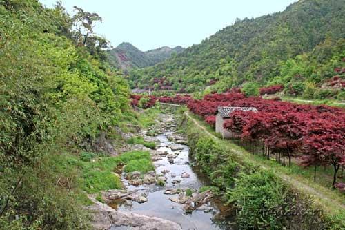 四明山美景(图片来源: 阿拉摄影的博客)