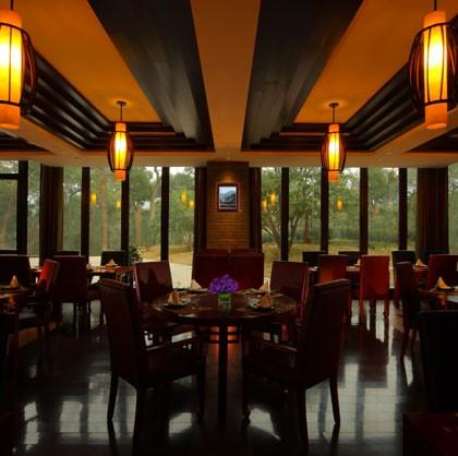 cha餐厅